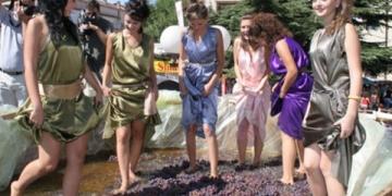 Тиквешки гроздобер. Фотографијата е преземена од Плусинфо.